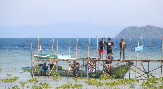 Edukasi Penanaman Mangrove di Pesisir Lampung