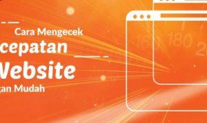 cara mengecek kecepatan website
